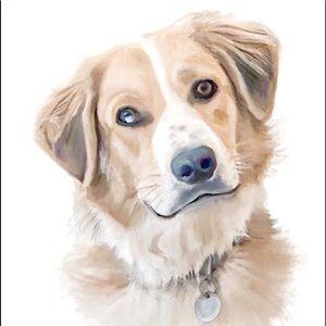 Custom Pet Portraits! About posher